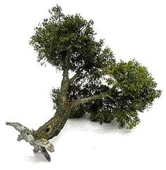 MODEL-TREE-1-35-SCALE-REALISTIC-PERENNIAL-HANDMADE-MODEL-TREE-TNT-004-22CM