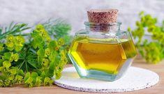 Λάδι για κυτταρίτιδα: Οι πιο αποτελεσματικές σπιτικές συνταγές Beauty Recipe, Diy Beauty, Diy And Crafts, Perfume Bottles, Entertainment, Gym, Perfume Bottle, Excercise, Homemade Beauty Products