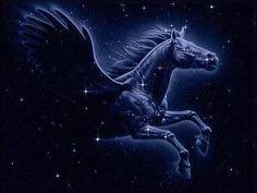 Pegaso - constelación