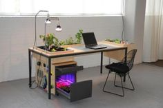 Sybrandy and Wand designed Desktoop, a desk that does double duty as a mini farm