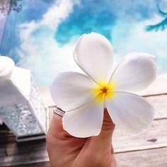 Bali Blessings PC - GypsyLovinLight