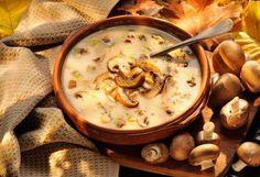 Cheesy Creamy Mushroom Soup