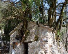 Αγία Θεοδώρα Βάστα: Η εκκλησία θαύμα με τα 17 δέντρα στη στέγη. Kirchen, Mount Rushmore, Character Design, Mountains, Nature, Travel, Naturaleza, Viajes, Destinations