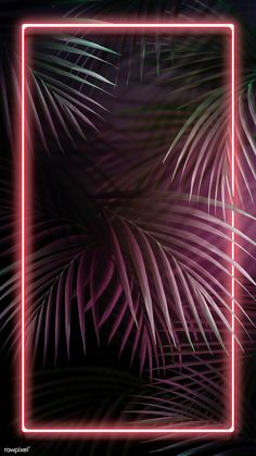 Tropical pink neon lights phone screen wallpaper, iphone and mobile phone .