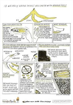 Things to do with banana peels - Teeth whitener - Relief various skin irritation : bug bites, acne, etc - Remove splinter - Wart removal - Mulch & pesticide - Attract Birds & Butterflies - Treat damage hair - Anti wrinkle & Acne mask - Skin exfoliate Banana Peel Teeth, Banana Peel Uses, Banana Peels, You Can Do, Just For You, Eating Bananas, Ideas Prácticas, Acne Mask, Warts