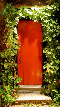 Would love to know what's beyond this magical entryway.  #PinPantone