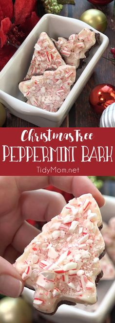 Peppermint bark is ridiculously easy to make. Use cookie cutters for Christmas Tree Peppermint Bark and you have an indulgent luxurious looking treat that's great for gifting! Get directions and recipe at TidyMom.net