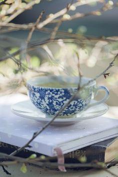 A spot of tea and a lovely read enjoyed in the Fall breeze. #teatime  https://www.facebook.com/CelestialSeasonings/app_593554104036964