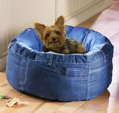 I think my dog would look good in one of these! Not sure where I could find pants with a large enough waist to make him one.....he is much larger than this cute pup!  Cute denim doggie bed (could make into a pussy cat bed)