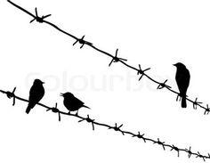 Vektor- Silhouette drei Vögel am Stacheldraht
