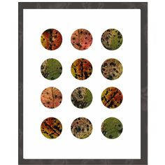 Fall Leaves Art Print, Contemporary Modern Abstract Botanical,... ($20) ❤ liked on Polyvore featuring home, home decor, wall art and whimzingers