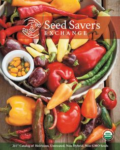 garden seed companies. Amazing Garden Seed Companies For The Best Vegetables | Seeds, Gardens And