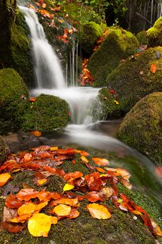 Fall in the birth of Ason, Cantabria, Spain