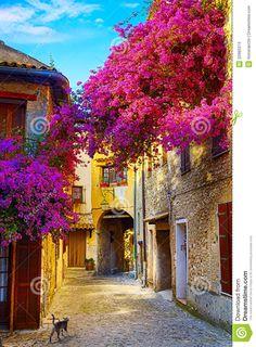 Kunst Mooie Oude Stad Van De Provence - Downloaden van meer dan 31 Miljoen hoge kwaliteit stock foto's, Beelden, Vectoren. Schrijf vandaag GRATIS in. Beeld: 32985374