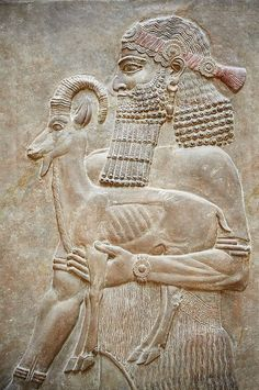Stone relief sculptured panel of a man holding an Ibex and a poppy flower. Inv AO 19872 from Dur Sharrukin the palace of Assyrian king Sargon II at Khorsabad, BC. Ancient Mesopotamia, Ancient Civilizations, Egypt Civilization, Ancient Mysteries, Ancient Artifacts, Ancient Aliens, Ancient History, Ancient Egypt, Art History