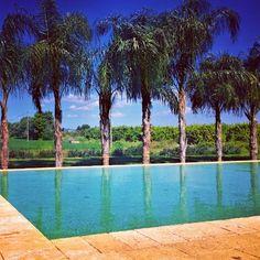 #CasaDiMelo #siracusa #sicily #italy #travel #beautiful #paradise #blue #water #nature #agrotourism #ecotourism #organic #italia  www.fleetinglife.com