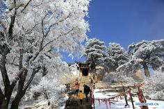 Snow scenery of Huashan Mountain in NW China - ecns.cn
