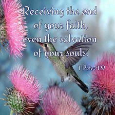 for you are receiving the goal of your faith, the salvation of your souls.  1  PETER 1:9