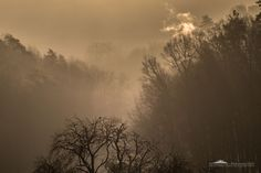 Morning fog [2] by Alexander Schlotter