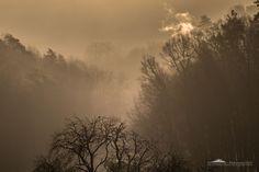 Morning fog [2] by Alexander Schlotter