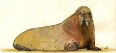 "Walrus ice ocean seal ivory sand beach animal 8x4"" 21x9.5 cm art original Watercolor painting by Juan bosco"