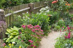 Along the garden fence,,,,