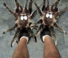 LOL.....wake up and step on these in the middle of the night.  You'll never need coffee again.
