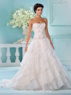David Tutera - Strapless organza over satin full A-line gown softly curved neckline, delicately hand-beaded drop waist bodice with back covered buttons, asymmetrically tiered circular cut skirt, chape