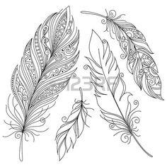 Plumes dessin artistiquement dessin e stylis vecteur plume de paon sur un fond blanc - Plume de paon dessin ...