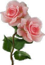 Two pink roses that sparkle
