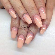 Fanzis.com