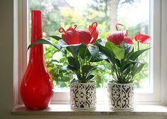 fejlődnek Glass Vase, Flowers, Plants, Home Decor, Decoration Home, Room Decor, Plant, Royal Icing Flowers, Home Interior Design