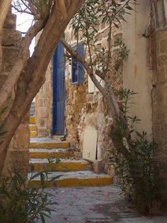 Palestine. Oh how I miss my home :(