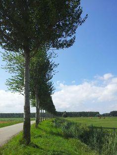 Nooderelsweg