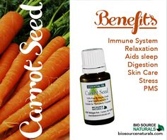 Carrot seed essential oil benefits and properties Wonderful for PMS, immune system support and much more! Essential Oils For Stress, Essential Oil Set, Natural Essential Oils, Natural Oils, Au Natural, Natural Healing, Carrot Seed Essential Oil, Insomnia Cures, Soap Making Recipes
