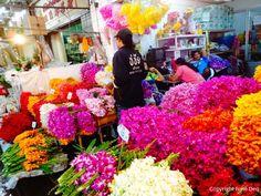 Ce marché est le plus grand marché aux fleurs de Bangkok. Grossistes et revendeurs se disputent le marché!      Vous y trouverez toutes s...