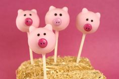 Pig Cake Pops - @candiquik~ I have got to make these!!!