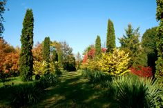 The #Botanical #Garden of #Iasi!
