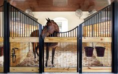 Does the sight of a pristine set of stalls make your heart skip a beat? These low stall fronts from Lucas Equine Equipment will do just that. Lucas Equine Equipmenthas been manufacturingquality custom made horse stall components.