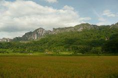 Tana Toraja, South Sulawesi Indonesia