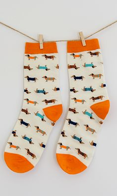 Step Out In Style Socks, Dachshund - Conversation Pieces