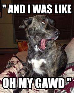 Oh my Gawd!!