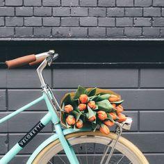 Bicicleta turquesa com detalhes em marrom carregando flores alaranjadas.
