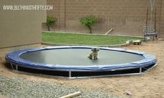 All Things Thrifty Home Accessories and Decor: DIY Inground Trampoline Instructions.  Minus the dog.