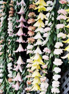 strings of flowers