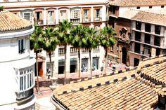 Vistas desde las habitaciones // Views from rooms