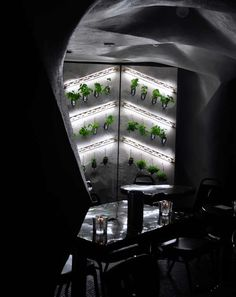 Hydroponic Wine Cellars - Carly Dean and Peter Gudonis Wine Garden is Sustainable Drinking Solution (GALLERY)