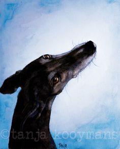 Black Galgo Español / Black Greyhound / zwarte windhond greyhound art dogart petportrait by Tanja Kooymans