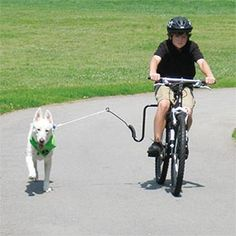 No way!!!! More like wish my dog could do this without giving me road rash in five seconds.