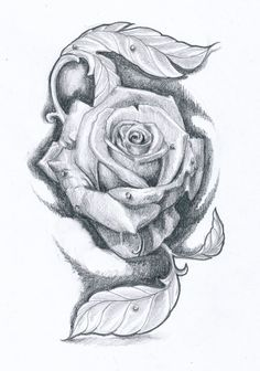 Its a sketch of a flower